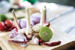 Πικάντικο μαγείρεμα μιγμάτων Στοκ Φωτογραφίες