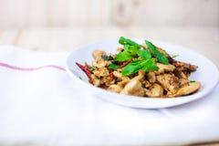Πικάντικο ταϊλανδικό κοτόπουλο βασιλικού έτοιμο να φάει στο παραδοσιακό πιάτο Στοκ φωτογραφία με δικαίωμα ελεύθερης χρήσης