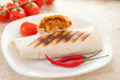 Πικάντικο Burrito Στοκ εικόνες με δικαίωμα ελεύθερης χρήσης