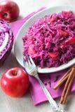 Πικάντικο stew κόκκινων λάχανων στοκ εικόνες