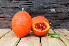πικρή κολοκύθα μωρών jackfruit ακανθωτή Στοκ Φωτογραφία