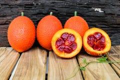 πικρή κολοκύθα μωρών jackfruit ακανθωτή Στοκ φωτογραφίες με δικαίωμα ελεύθερης χρήσης