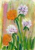 Πικραλίδες, ζωγραφική watercolor σε χαρτί Στοκ φωτογραφίες με δικαίωμα ελεύθερης χρήσης