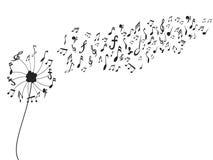 Πικραλίδα με τις σημειώσεις μουσικής ελεύθερη απεικόνιση δικαιώματος