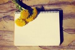 Πικραλίδα σε ένα άσπρο καθαρό σημειωματάριο Στοκ Εικόνα