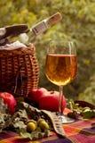 Πικ-νίκ φθινοπώρου με το άσπρο κρασί, τα μήλα και ένα καλάθι Στοκ Φωτογραφίες