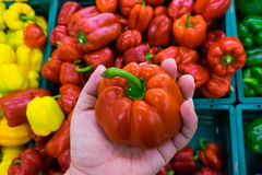Πιπέρια κουδουνιών αγοράς ατόμων Στοκ φωτογραφίες με δικαίωμα ελεύθερης χρήσης