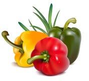 πιπέρια κρεμμυδιών χρώματο&s Στοκ Εικόνες