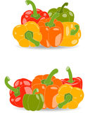 Πιπέρια, σύνολο κίτρινων, κόκκινων, πράσινων και πορτοκαλιών πιπεριών και φύλλων μαϊντανού, απεικόνιση Στοκ Εικόνα