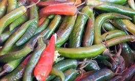 πιπέρια της Χιλής Στοκ Εικόνες