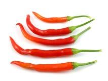 πιπέρια του Cayenne Στοκ Εικόνες