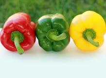 πιπέρια τρία Στοκ εικόνα με δικαίωμα ελεύθερης χρήσης