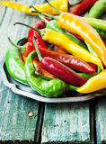 Πιπέρια τσίλι, ζωηρόχρωμα πικάντικα πιπέρια Στοκ φωτογραφίες με δικαίωμα ελεύθερης χρήσης