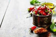 Πιπέρια τσίλι με τα χορτάρια και τα καρυκεύματα Στοκ Εικόνες