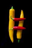 Πιπέρια τσίλι που απομονώνονται στο μαύρο υπόβαθρο Στοκ Φωτογραφίες