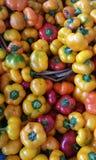 Πιπέρια τυριών Στοκ φωτογραφία με δικαίωμα ελεύθερης χρήσης