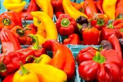 πιπέρια Στοκ Φωτογραφία