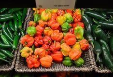 πιπέρια habanero στοκ φωτογραφία με δικαίωμα ελεύθερης χρήσης