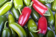 πιπέρια jalapeno Στοκ φωτογραφίες με δικαίωμα ελεύθερης χρήσης