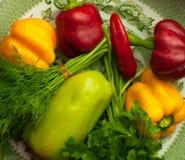 Πιπέρι κόκκινο και πράσινο με τον άνηθο και το μαϊντανό σε ένα πράσινο πιάτο Στοκ φωτογραφία με δικαίωμα ελεύθερης χρήσης