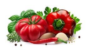 Πιπέρι ντοματών και κουδουνιών για την κονσερβοποίηση, χορτάρια, σκόρδο, πορείες στοκ εικόνες