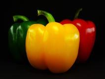 πιπέρι τρία Στοκ Εικόνα