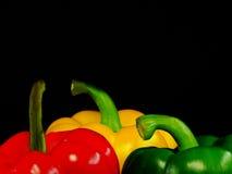 πιπέρι τρία Στοκ Φωτογραφίες
