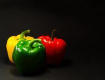 πιπέρι τρία Στοκ εικόνες με δικαίωμα ελεύθερης χρήσης