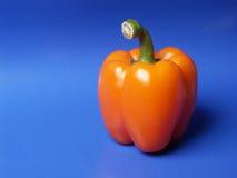 πιπέρι στοκ φωτογραφίες με δικαίωμα ελεύθερης χρήσης