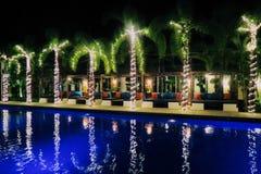 Πισίνα και palmtrees Στοκ Εικόνες