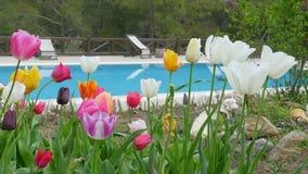 Πισίνα στο θέρετρο λόφων με τους μαθητές, fethiye, Τουρκία απόθεμα βίντεο