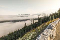 Πιό βροχερό εθνικό πάρκο ΑΜ, Ουάσιγκτον, ΗΠΑ Στοκ εικόνες με δικαίωμα ελεύθερης χρήσης