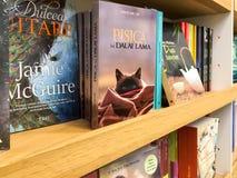 Πιό πρόσφατα διάσημα μυθιστορήματα για την πώληση στο κατάστημα βιβλίων βιβλιοθήκης στοκ φωτογραφία