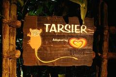 πιό tarsier ξύλινος σημαδιών Στοκ Εικόνες