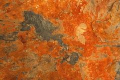 πλάκα βράχου Στοκ Εικόνες