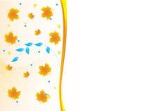 πλάτη φθινοπώρου Στοκ Εικόνες