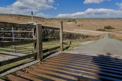 Πλέγμα και περίφραξη βοοειδών χάλυβα στοκ φωτογραφίες με δικαίωμα ελεύθερης χρήσης