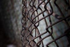 Πλέγμα φραγών σιδήρου Στοκ φωτογραφίες με δικαίωμα ελεύθερης χρήσης