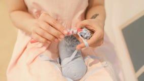 Πλέκοντας χέρι - γίνοντα χόμπι Νέα χέρια γυναικών με την εργασία δερματοστιξιών coll hipster Πλέξιμο τσιγγελακιών φως της ημέρας  απόθεμα βίντεο