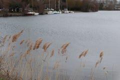 Πλέοντας εγκαταστάσεις βαρκών λιμνών στοκ εικόνα με δικαίωμα ελεύθερης χρήσης