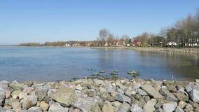 Πλέοντας σκάφη και βάρκες μηχανών στο λιμάνι του χωριού Wiek στα νησιά Rugen Η θάλασσα της Βαλτικής απόθεμα βίντεο