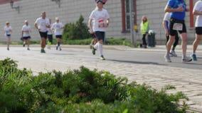 Πλήθος των αθλητών που τρέχουν στο μαραθώνιο φιλμ μικρού μήκους