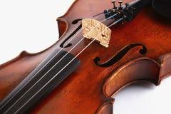 πλήρες βιολί Στοκ Εικόνες