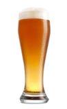 πλήρες γυαλί μπύρας στοκ εικόνες