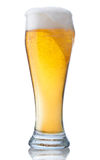 πλήρες γυαλί μπύρας Στοκ Φωτογραφίες