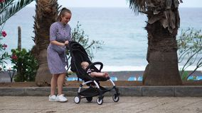Πλήρες μήκος της νέας γυναίκας που εξετάζει τη μεταφορά μωρών στο πάρκο φιλμ μικρού μήκους