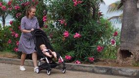 Πλήρες μήκος της νέας γυναίκας που εξετάζει τη μεταφορά μωρών στο πάρκο απόθεμα βίντεο