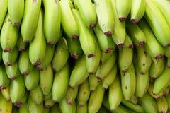 Πλήρες πλαίσιο που βλασταίνεται των ώριμων μπανανών στοκ φωτογραφίες