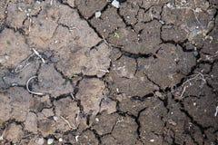 Πλήρες πλαίσιο του ραγισμένου ρύπου Υπόβαθρο της ραγισμένης και ξηράς γης Νεφελώδης ημέρα στοκ φωτογραφία με δικαίωμα ελεύθερης χρήσης