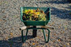 Πλήρες wheelbarrow με τα φύλλα φθινοπώρου πτώσης Στοκ Φωτογραφία
